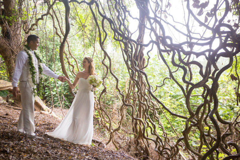A rainforest destination for your Hawaii wedding?