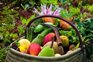 An assortment of fruit from Hawaii. Photo Credit: Hawaii Tourism Authority (HTA) / Tor Johnson
