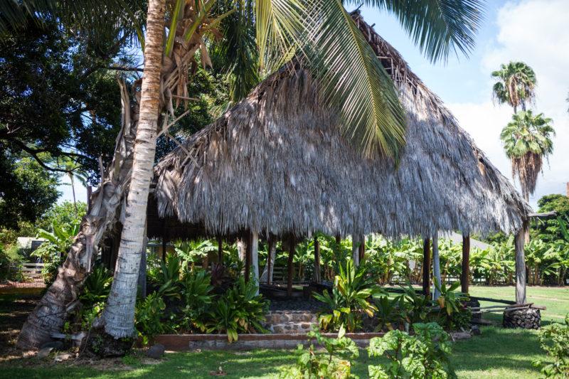 Hale in Kamehameha Iki Park