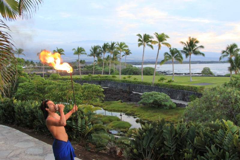 The blowing of the conch shell will often signal the beginning of a luau.