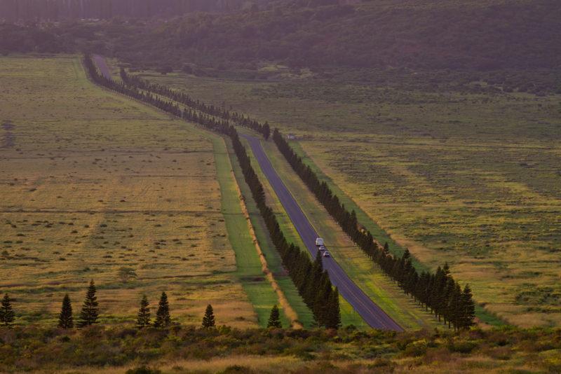 The straight Palawai road in Lanai.