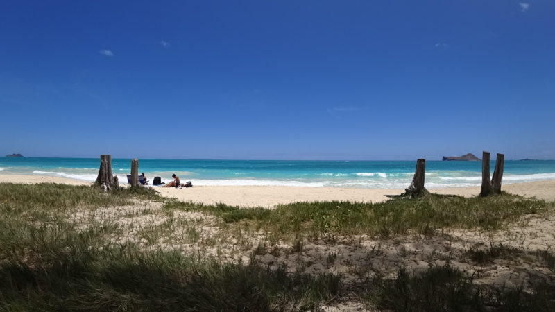 PIcnic at Waimanalo beach.