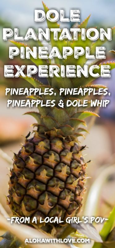 "Dole Plantation is the place to be to get the ""Hawaii's complete pineapple experience"". Find out everything from the Pineapple Express (no, not the movie) to the famous Dole Whip that you really shouldn't miss."