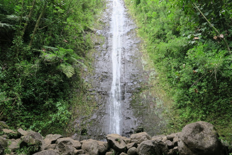 150 Things To Do On Oahu - hike Manoa Falls.