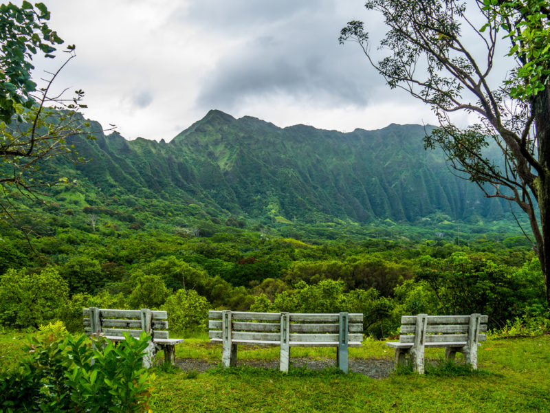 Hoomaluhia Botanical Garden's view of the Koolau mountain range.