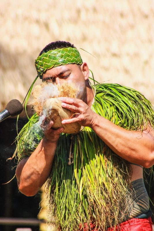 Polynesian Cultural Center making fire with a coconut.