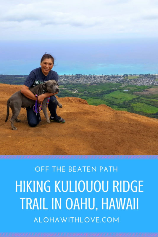 The Kuliouou ridge trail in Oahu, Hawaii has one of the best vistas on the island. Besides the incredible view waiting for you at the top, the 3+ hour trek includes an ironwood pine forest, spectacular cool breezes, tree roots that form archways and ferns growing wild. Here's what you need to know before you attempt this hike. - Kuliouou | Kuliouou ridge | Kuliouou trail | Oahu hikes | Oahu hiking | Oahu hiking trails | Oahu hikes with kids | Oahu hikes bucket lists | Aloha With Love