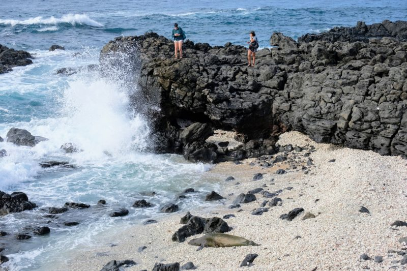 2 girls look down at the Hawaiian monk seal from the other side at Kaena Point.
