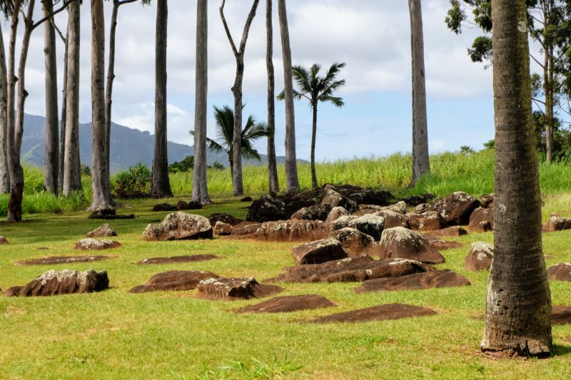 The Kukaniloko birthstones where the birth of Hawaiian royalty took place.