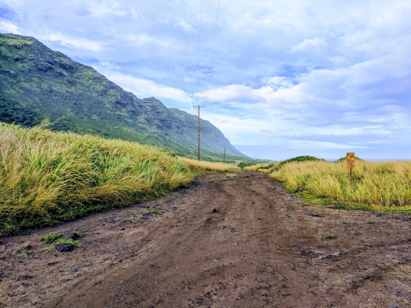 The straight dirt path on Kaena Point trail.