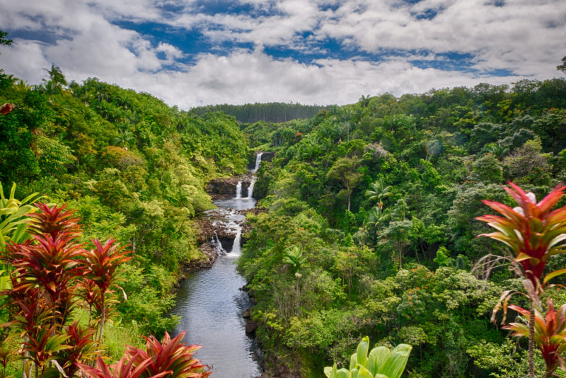 The spectacular Umauma Falls in the Big Island. From the best Hawaiian island to visit for kids.