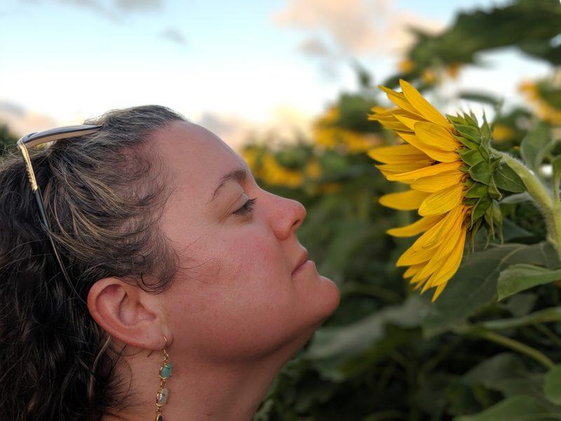 Taking beautiful photos at Waialua sunflower fields