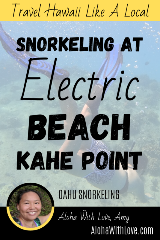 Snorkeling At Electric Beach (Kahe Point Beach Park)