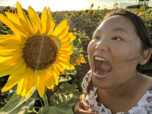 Hungry for sunflowers.