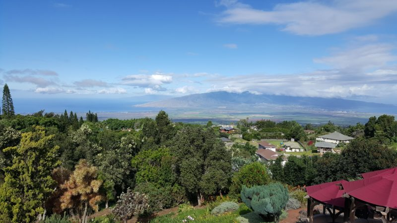 The view from Kula Lodge.
