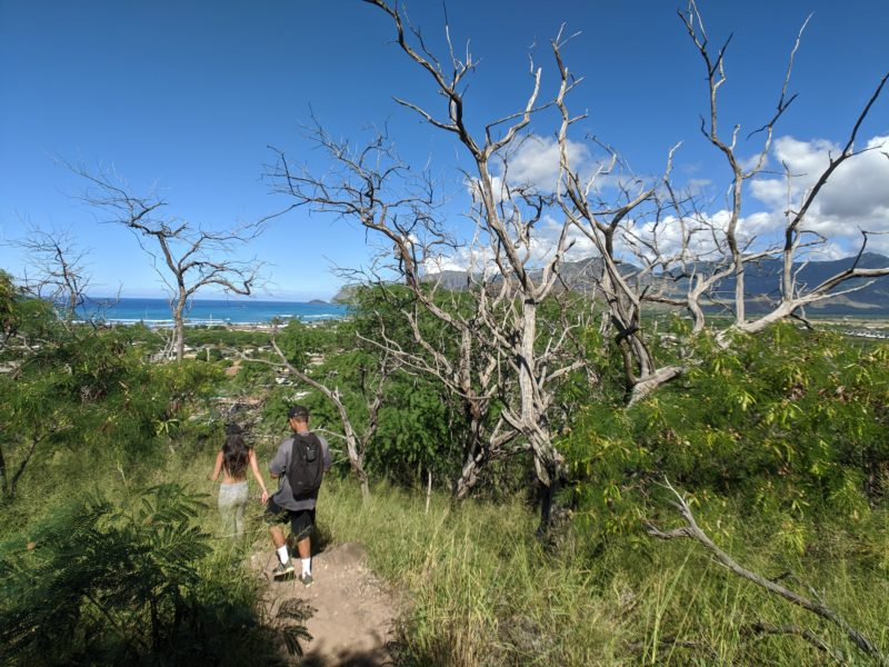 The pink pillbox hike is dry and very hot.