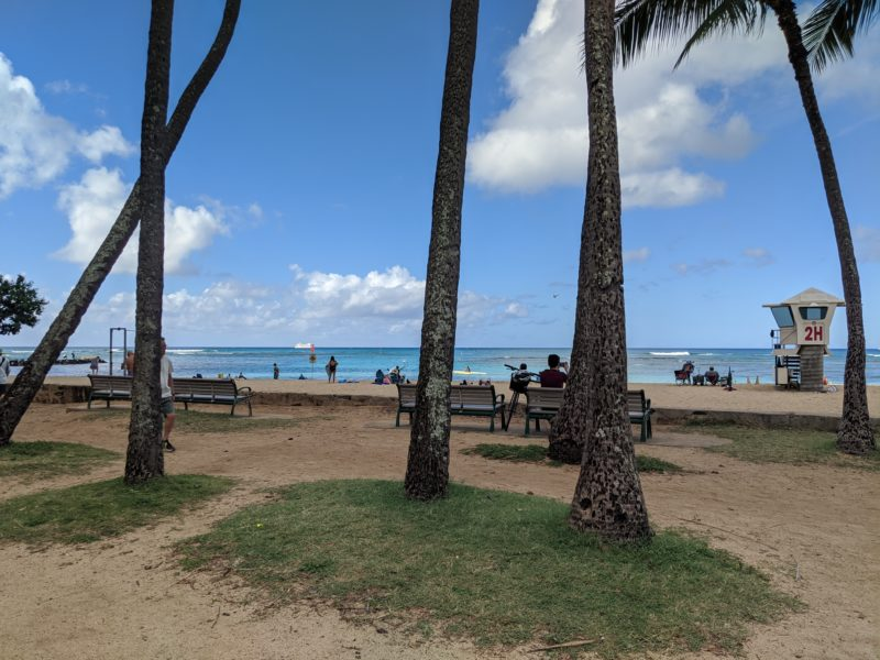 San Souci Beach - chance for Hawaiian monk seal sightings!