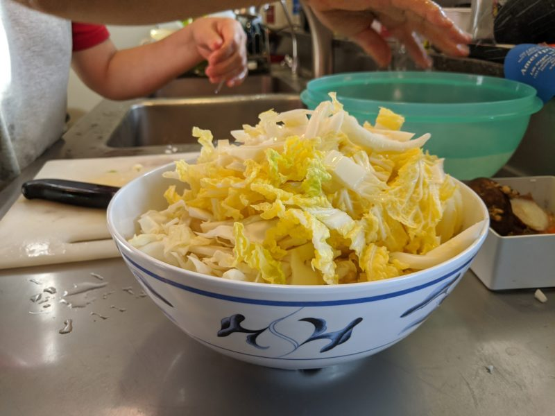 Use whatever cabbage you have. Mom used Chinese cabbage and regular green cabbage.