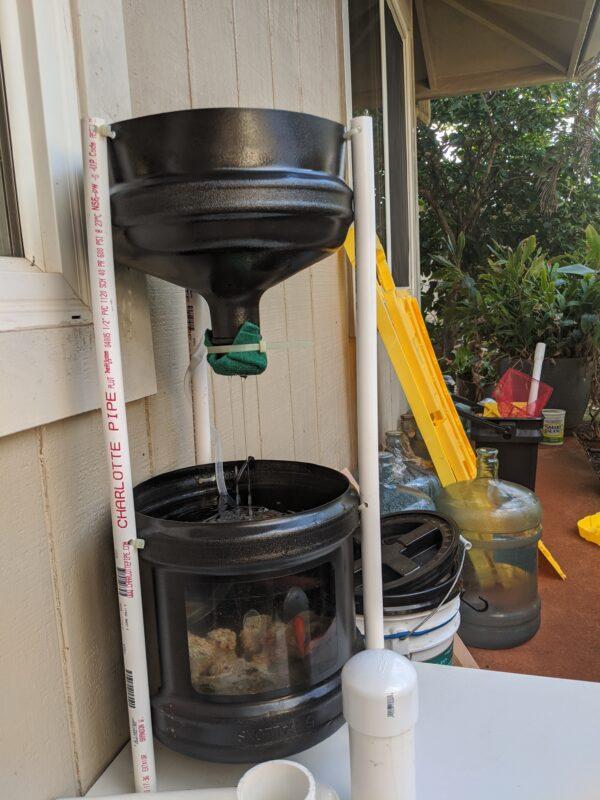 Mini aquaponics system with 1 feeder fish.