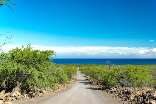 Coastal Hike To Kiholo Bay To See Green Sea Turtles