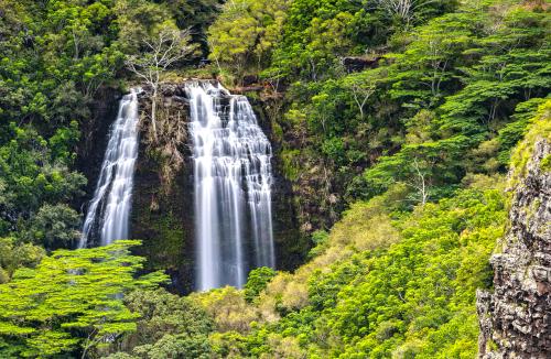 Enjoy the view of Opaekaa Falls in Kauai at the viewpoint.
