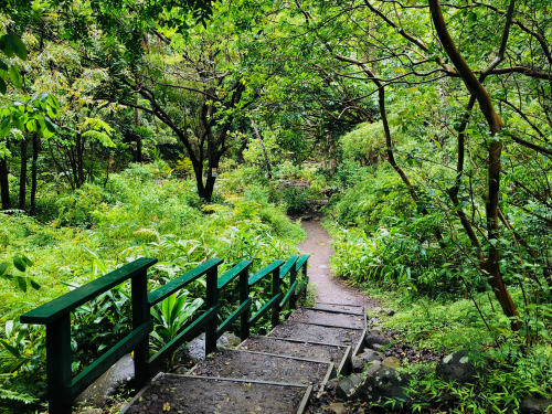 The Iao Valley Trail.
