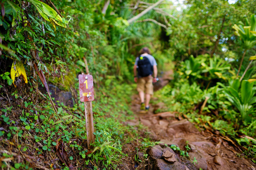 Passing the one mile marker on the Kalalau Trail in Kauai.