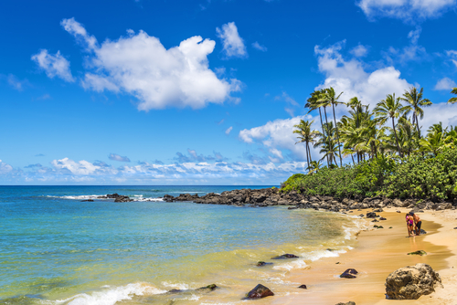 Laniakea Beach (Turtle Beach) is one of the most famous beaches in the North Shore because of the turtles that like to come up on the sand.