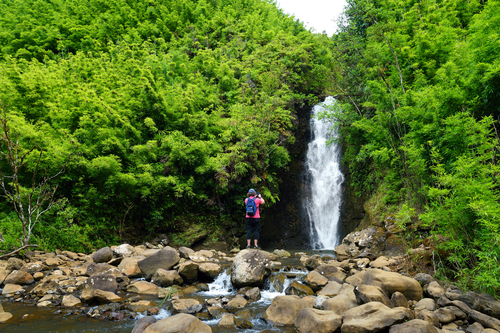 There are so many beautiful and accessible waterfalls in Maui, it's hard to pick a favorite!