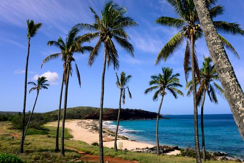 Best beaches in Hawaii: Kepuhi Beach. Hawaii travel. Things to do in Molokai. Things to do in Hawaii.