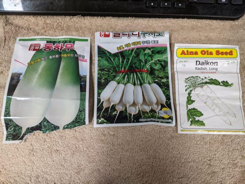 The three daikon seeds we use.