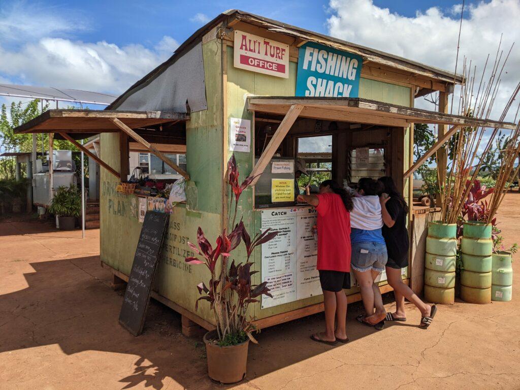 Alii Agriculture Farms' office shack.