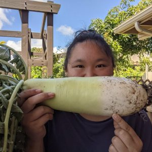 I've discovered that daikon (Japanese radish) grow really well in aquaponics!